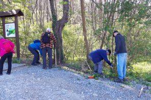 Održana radna akcija čišćenja povodom Dana planete Zemlje